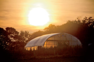 The Neales' NRCS-funded 1,200-square-foot greenhouse.
