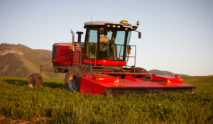 """Our customers will also be amazed at how quiet and comfortable the cab has become,"" says Dean Morrell, AGCO product marketing manager for hay and forage equipment."