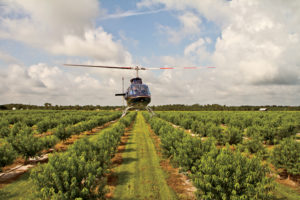 Greg Waters flies over his orchard of low-chill peaches.