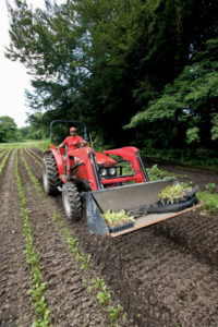 Dan Roberts, part of WFCF's seasonal farm crew, drives the farm's Massey Ferguson during planting.