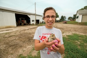 Burt's daughter, Kiara, shows off one of the pheasants soon to be released on the farm.