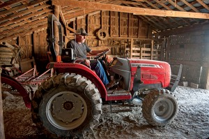 Where growing and harvesting hay might once have been a losing proposition for small farmers like Hammann, it's now becoming an economical way for them to procure quality feed.