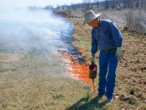For bermudagrass hay fields, a drip torch is one of Hancock's favorite tools.