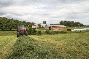 The MacDonalds grow low-heat-unit corn and grass hay on 450 acres, but due largely to a short growing season, they must still purchase a portion of their feed most years.