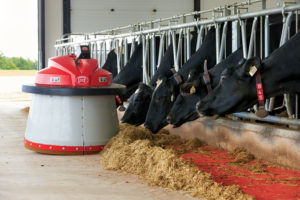 A robotic feed pusher helps ensure feed is within reach of the Schnarr's cows.