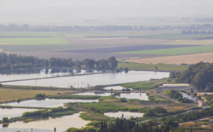 Dan Fish Farms, an aquaculture facility in the northern Hula Valley.