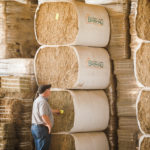 "Barry Schmitt says a factor that's contributed to the company's recent success has been use of its ""hay cloud"" software system that can track hay, down to the individual bale, and match it with customer requirements."