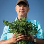 man holding alfalfa hay