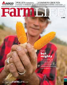 Fall 2016 Small Farm Cover