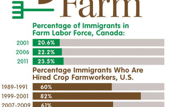Percentage of immigrants in farm labor in U.S. and Canada (chart)