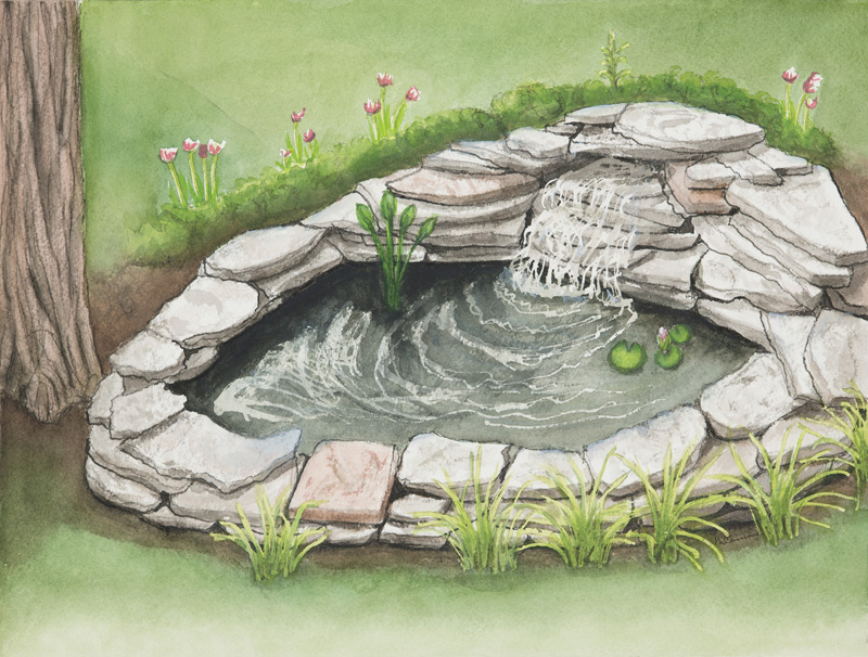 How to build a small pond in your backyard outdoor goods for How to build a small lake